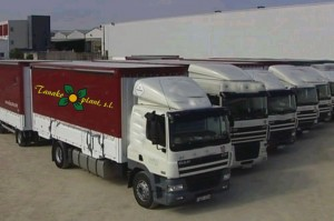 flotte-de-camion